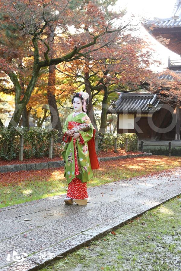 京都 舞妓 体験 着物 旅行 観光 秋 紅葉 祇園