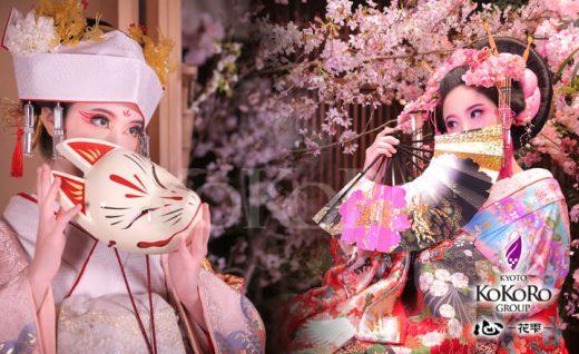 うたかた千本桜 狐の嫁入り