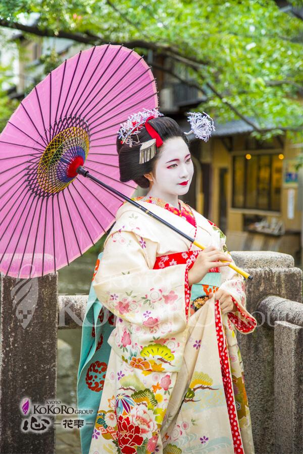 夏の季節の舞妓体験特別プラン